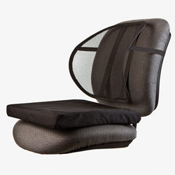 Ergonomic Mesh Back Support with Comfort Cushion Price: $24.95