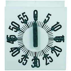 Tactile Ergonomic Long Ring Low Vision Timer Price: $19.95