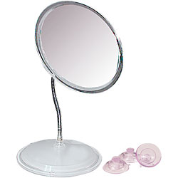 Vanity or Wall-Mount Gooseneck Mirror Price: $25.99