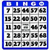 Low Vision Bingo Cards
